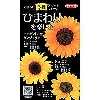 【種子】 ひまわり 3種アソートパック サカタのタネ