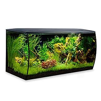 Fluval Flex Aquarium 123 l, Schwarz