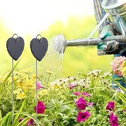 Yardwe 6pcs Etiquetas Florales de jardinería Etiquetas de Plantas ...