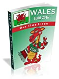 Wales Euro 2016. Our Time is Now! (English Edition)