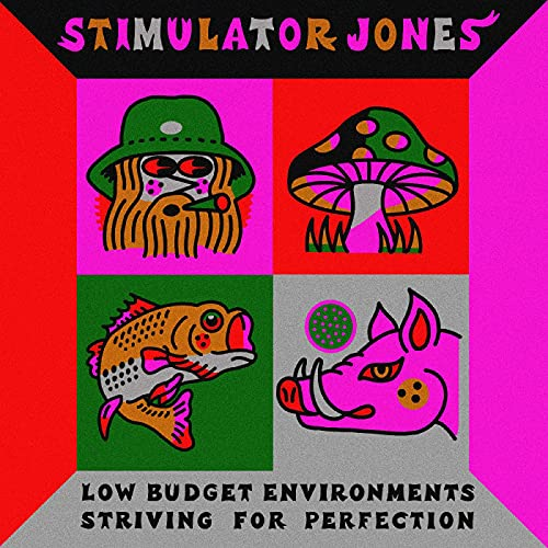 Low Budget Environments Striving For Perfection [VINYL]