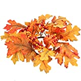Package of 4 Vibrant Fall Inspired Oak Leaf Candle Rings with Autumn Berries