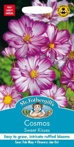 Mr. Fothergill's 17067 Mélange graines de Cosmos Sweet Kisses pour 30 Plantes