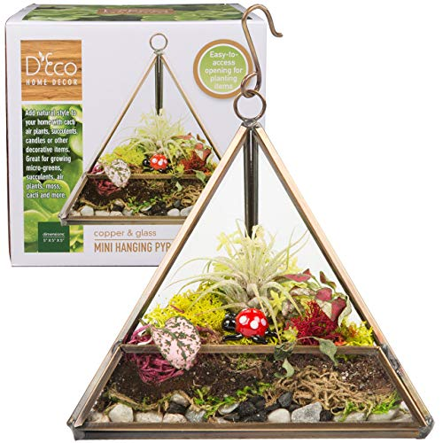 Deco Glass Geometric DIY Terrarium for Succulent & Air Plant - Hanging Mini Triangle Shape for Indoor Gardening Decor- Create Your own Flower, Fern, Moss Centerpiece- Amazing Holiday and Wedding Gift