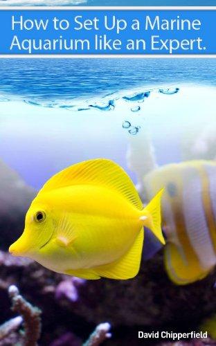 How to Set Up A Marine Aquarium Like an Expert. (Aquarium and Turtle Mastery Book 1) (English Edition)