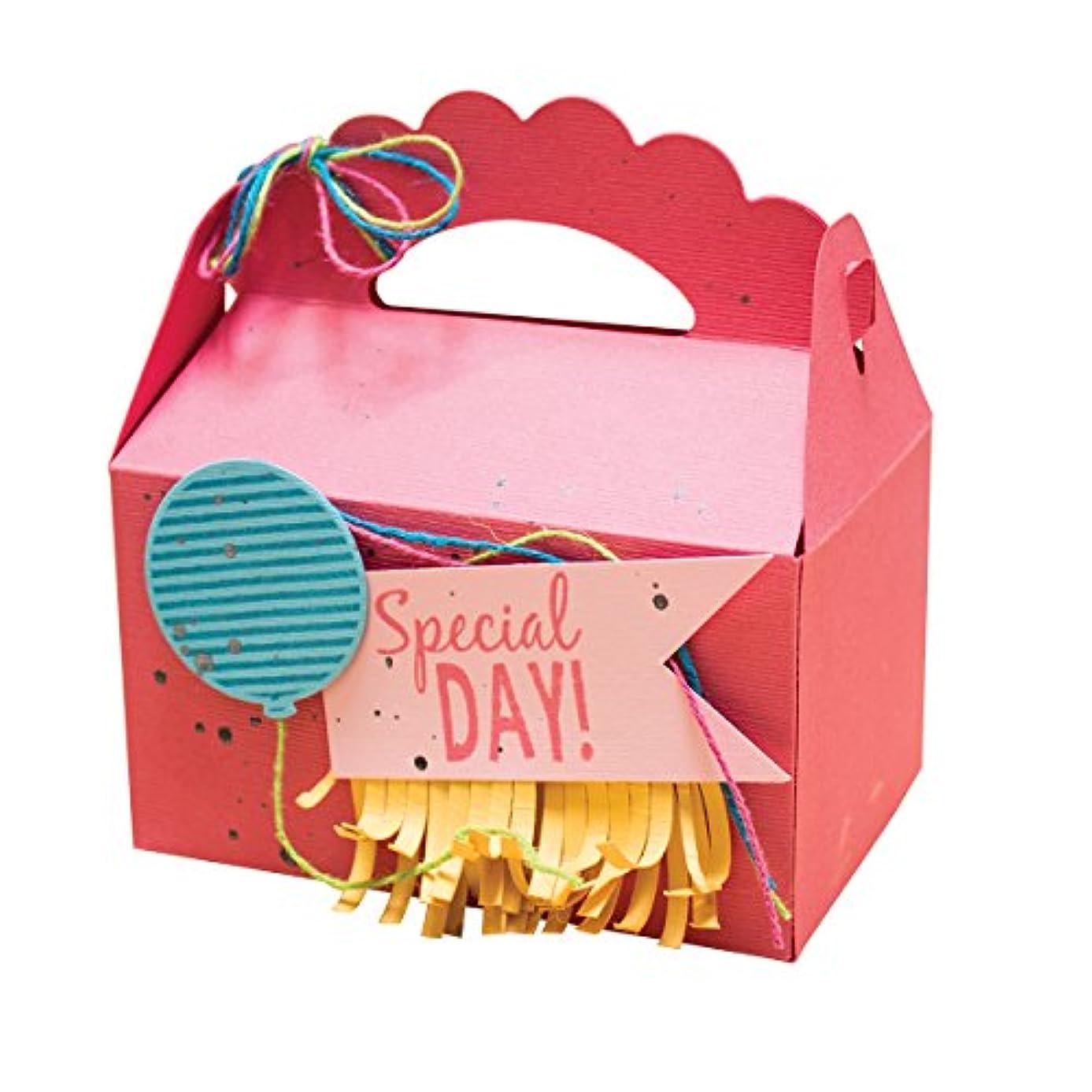 Spellbinders SCSD-014 Celebrations Special Day Stamp/Die Set