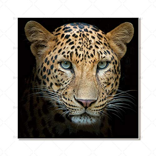 Animal Canvas Painting Home Decoration Wall Art Poster and Print Print Decoración del hogar 30X30cm