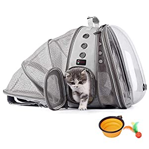 HOTLANTIS Cat Backpack Small Dog Backpack Carrier, Expandable with Breathable Mesh, Airline Approved, for Travel, Hiking, Walking & Outdoor Use (Grey)