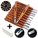 12 Set SK2 Carbon Steel Wood Carving Tools, Crafting Chisel Tools with Storage