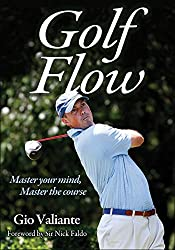 Giving Feedback To Hitters: Golf Flow book by Gio Valiante