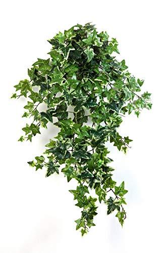 artplants.de Tralcio d'edera Decorativa Luka, 262 Foglie, Bianco-Verde, 70cm - Edera Artificiale/Decorazione pensile