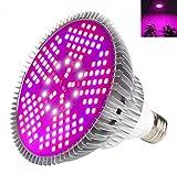 Pflanzenlampe Grow Light 100W E27 LED Wachstumslampe Full Spectrum für Zimmerpflanzen Gemüse und Blumen