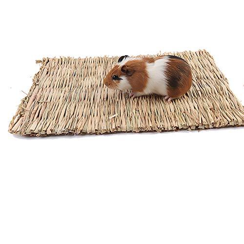 Haustier Grasmatte,Kaninchen Matten Bett Kleintier Ungiftig Kauspielzeug,Natürliche Hand Gewebte Gras Teppiche Strohmatte Pet Gras Pads Meerschweinchen Grasmatte für Hamster Papageien Frettchen (2pcs)