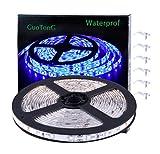 GuoTonG Blue LED Strip Lights, Waterproof cuttable 300 SMD 2835 LED, 2000K 12V 16.4ft/5m Tape, Flexible Ribbon, Kitchen Cabinet Lighting