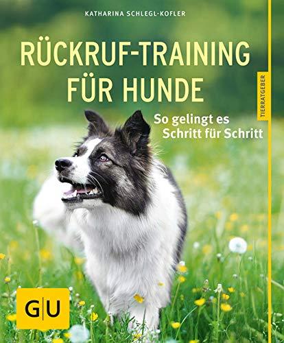 Rückruf-Training für Hunde: So gelingt es Schritt für Schritt