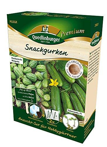 Kit de semis pour combinaison de concombre Annales de semences