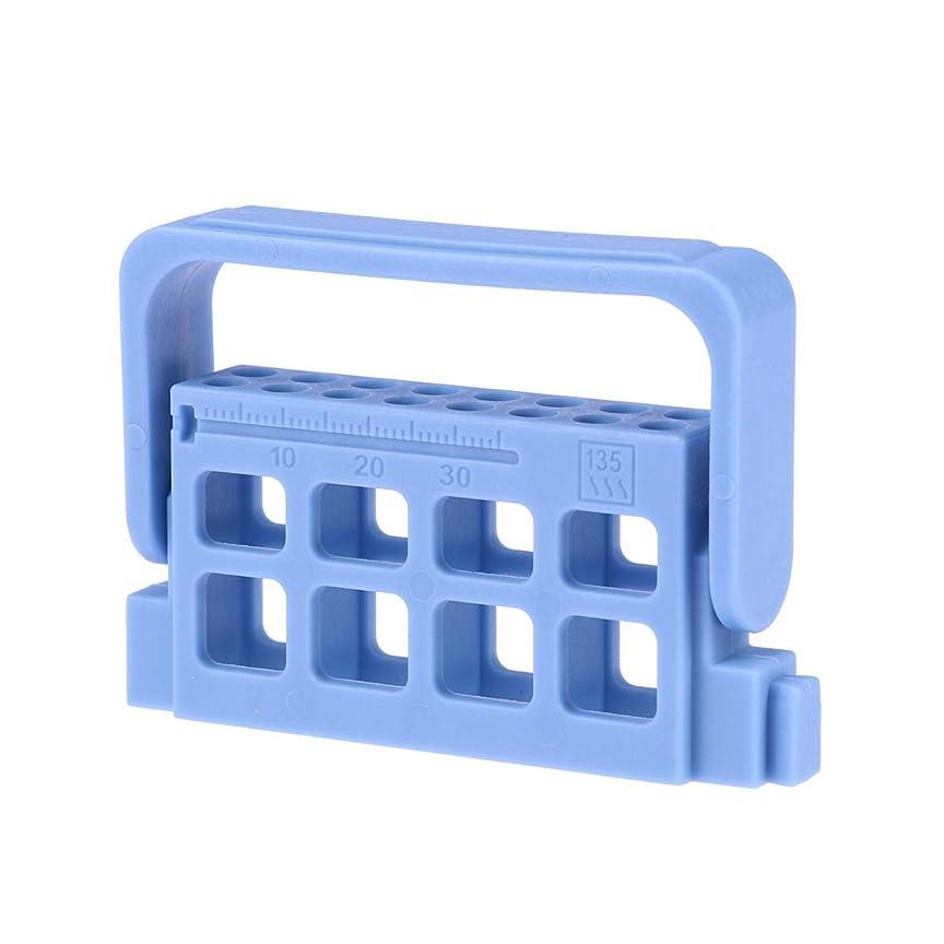 浸食在庫肥沃なHEALLILY 歯科用測定ファイルホルダー口腔根管洗浄スタンド付き測定スケール臨床用具(青)