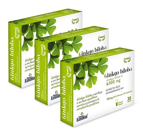 Ginkgo biloba complex 6.000 mg 24%/6 % (ext. seco) 30 cápsu