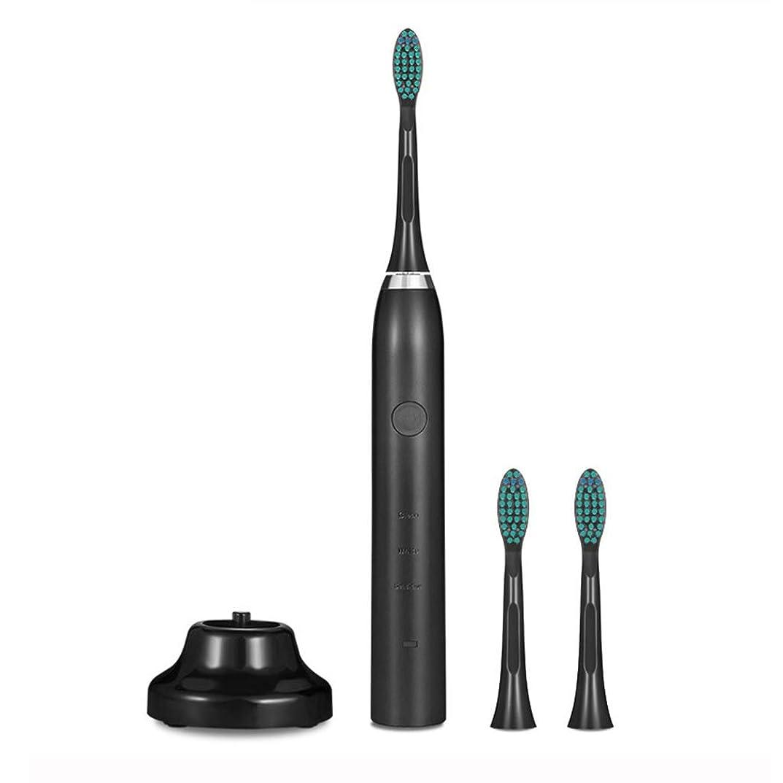 パーセント費用届ける電動歯ブラシ、3つのモードと2分の2タイマー付きUSB充電式歯ブラシ、3つの交換用ブラシヘッド、口の健康を改善するための防水歯ブラシ,Black