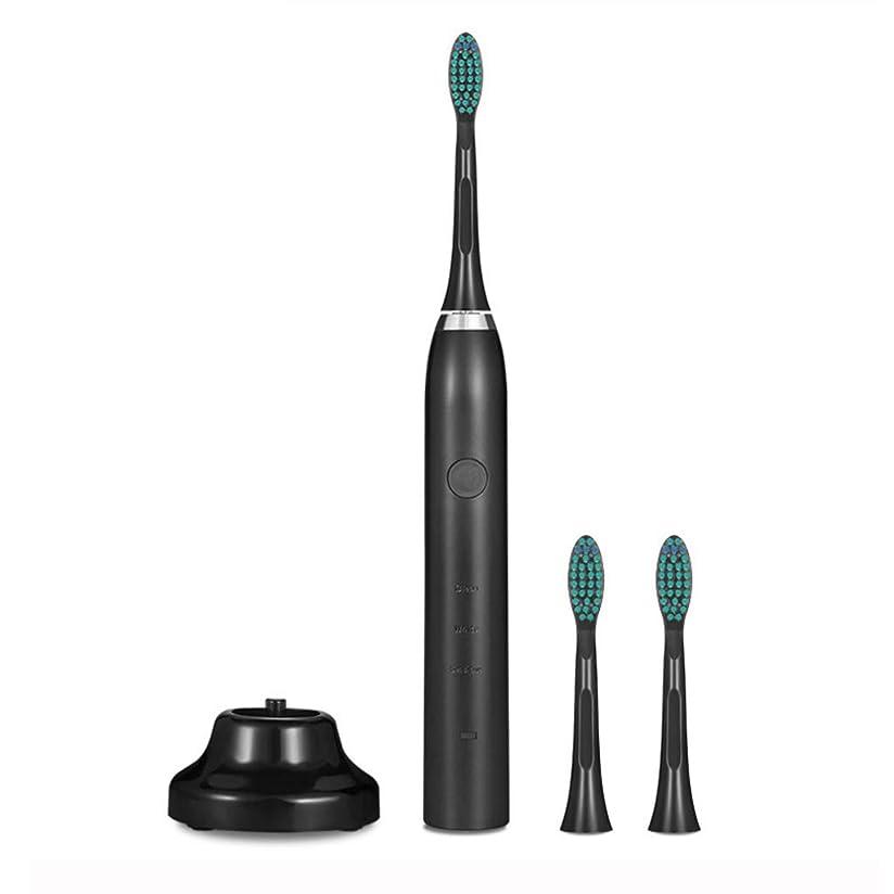 電動歯ブラシ、3つのモードと2分の2タイマー付きUSB充電式歯ブラシ、3つの交換用ブラシヘッド、口の健康を改善するための防水歯ブラシ,Black