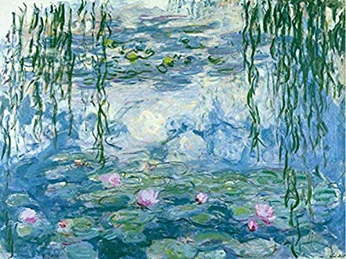LSDAMW 5D DIY Diamond Painting Claude Monet Water Lilies 16X20 inches Full Round Drill