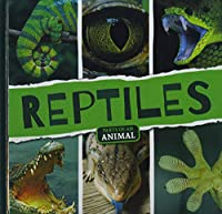 Reptiles (Parts of an Animal)