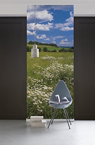 Komar - fleece fotobehang MEADOW - 100 x 280 cm - behang, muur decoratie, bloemenweide, landschap, margrieten - 254-DV1