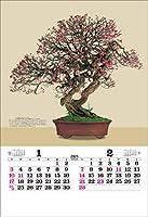 トーダン TD-539 トーハン・DX 盆栽[2021年版カレンダー]