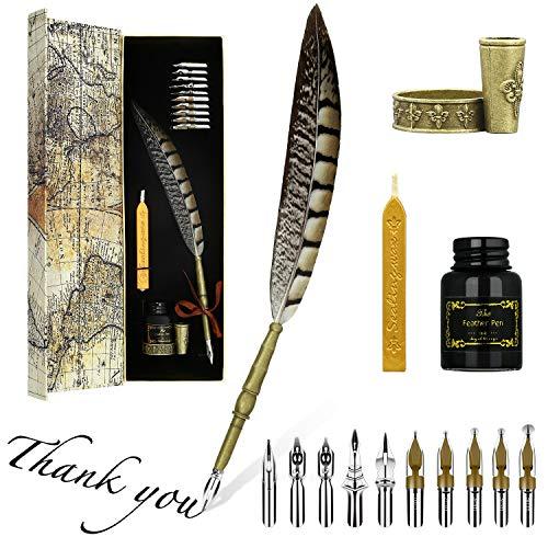 Hethrone Kalligraphie Stift Set Dip Pen und Tinte Set Schreibfeder handlettering stifte mit 10 Schreibfedern, Stifthalter und Schwarzer Tinte in Geschenkbox