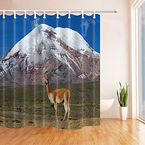 Reizender Esel-Duschvorhang-Polyester-wasserdichte Badezimmer-Badehaus-freie Ringe