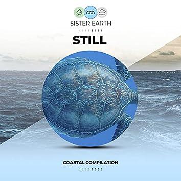 ! ! ! ! ! ! ! ! Still Coastal Compilation ! ! ! ! ! ! ! !