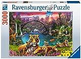 Ravensburger Italy- Tiger in paradiesischer Lagune Puzzle 3000 Pezzi, Multicolore, 16719