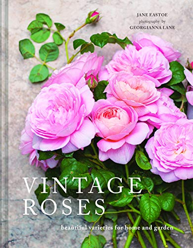 Vintage Roses: Beautiful varieties for home and garden (Beautiful Varieties/Home/Gardn) (English Edition)