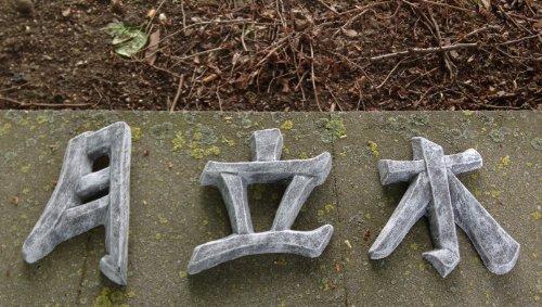 DS Steinfiguren Garten Deko Chinesische Schriftzeichen 3er Set, massiver Steinguss, frostfest