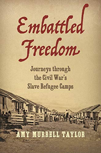 Cover of Embattled Freedom