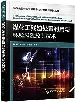 环保公益性行业科研专项经费项目系列丛书--煤化工残渣处置利用与环境风险控制技术