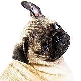Ohrenreiniger 100 ml die Ohrenpflege für den Hund reinigt und pflegt die Gehörgänge für ein stets einwandfreies Gehör - 2