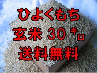 令和2年産 佐賀県産 もち米 玄米30kg【ヒヨクモチ】【契約農家栽培米】