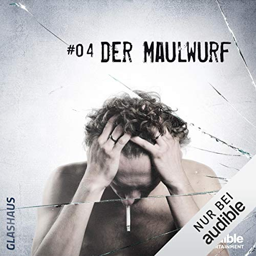 Der Maulwurf audiobook cover art