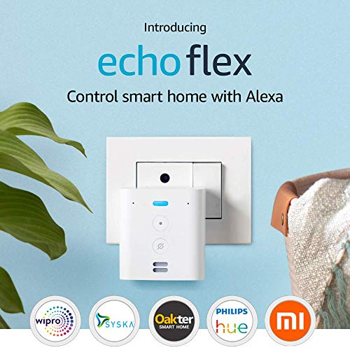 Introducing Echo Flex– Plug-in Echo for smart home control
