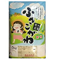 令和2年産 玄米 ふさこがね 10kg 千葉県産 (玄米10キロ)