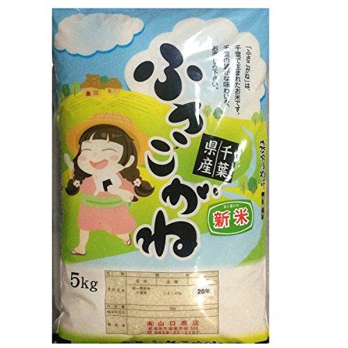 30年産新米 玄米 ふさこがね 10kg 千葉県産 30年産 (玄米10キロ)