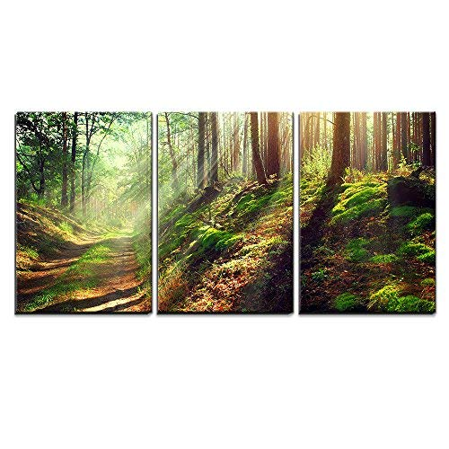 wall26 - 3 Piece Canvas Wall Art - Beautiful Scene of Misty Old Path in Forest on an Sunny Autumn Morning - Modern Home Art Stretched and Framed Ready to Hang - 16