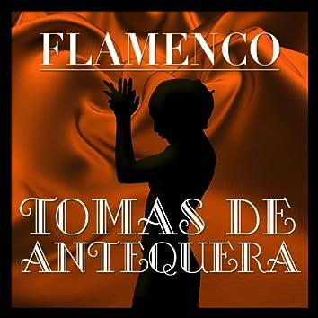 Flamenco: Tomás de Antequera