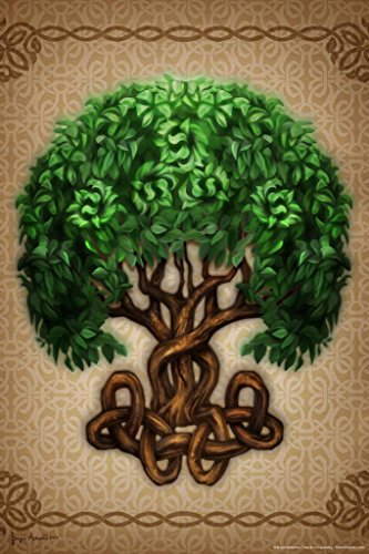 Celtic Tree of Life by Brigid Ashwood Cool Wall Decor Art Print Poster 24x36