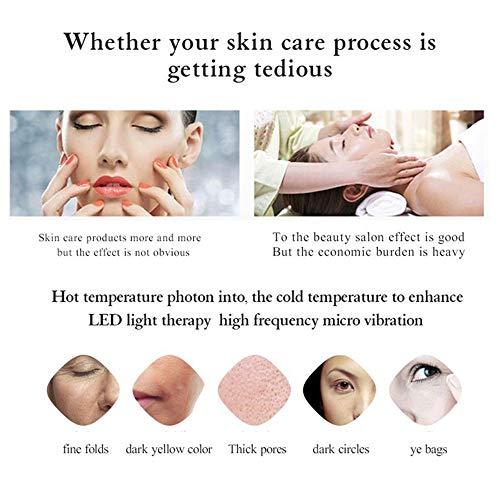 Ultrasonic 2 en 1 Massage du Visage Beauté Machie Chaud Froid Cryothérapie Femmes Masseur Facial,White