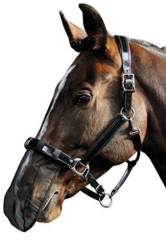 Reitsport Amesbichler Pferde Nasenfliegenschutz Fliegen Nüsternschutz Insektenmaulnetz schwarz Warmblut