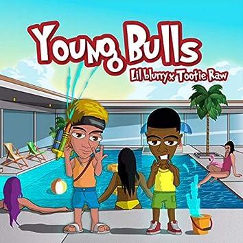 Young Bulls