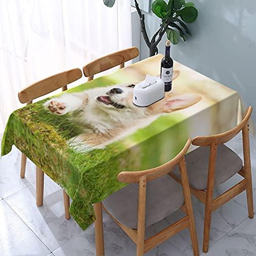 Corgi cachorro impresión a prueba de derrames e impermeable, lavable a máquina, mantel para uso al aire libre, fiestas | Acción de Gracias/Navidad, 137 x 183