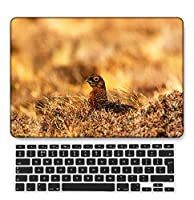 FULY-CASE プラスチックウルトラスリムライトハードシェルケース対応のある新しいMacBook Pro 13インチあり/なしタッチバー/タッチIDUSキーボードカバー A2338 M1/A2289/A2251 (フェザーシリーズ 0501)